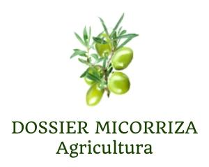 mykoflor-prezentacja